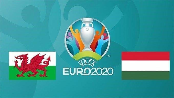 Soi kèo nhà cái Wales vs Hungary, 20/11/2019 – Vòng loại Euro 2020
